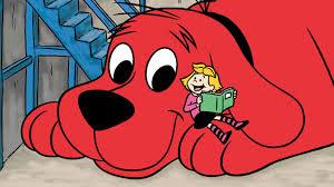 Cane rosso ti amo: i fulvi trovano casa prima e si abbandonano meno