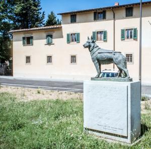 La Scuola nazionale cani guida di Scandicci, alle porte di Firenze