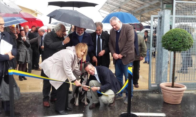 Verona inaugura il nuovo rifugio per 200 cani: tanto spazio, tecnologia e comfort per il canile del 2000