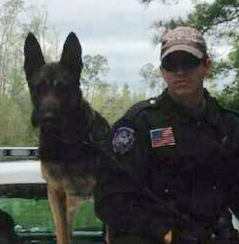 Cane poliziotto si fa pugnalare per salvare il partner umano