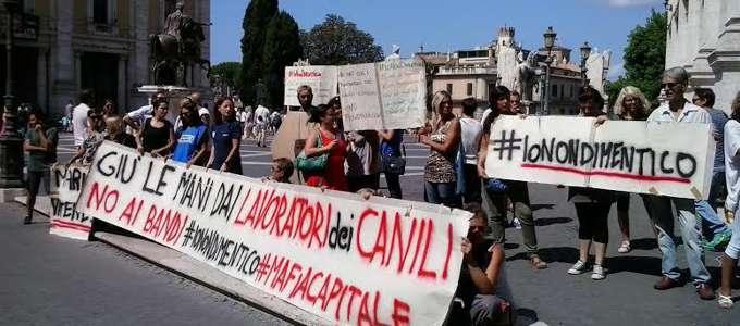 A Roma scoppia la rivolta dei canili: gestione a un'azienda attiva anche sul fronte delle sperimentazioni