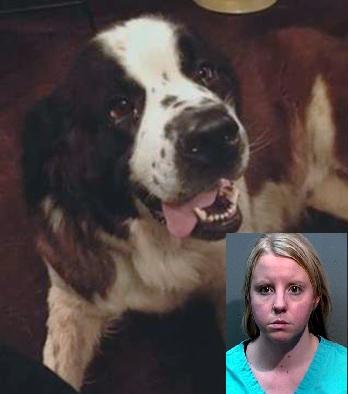Salva un randagio, ma la arrestano per il furto del cane