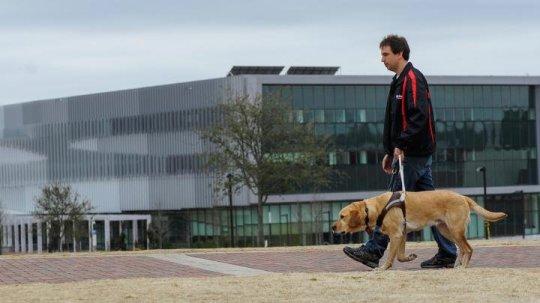 La tecnologia aiuta i cani guida: nuovo guinzaglio dirà come stanno ai non vedenti