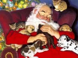 Buone Feste a tutti per un Natale di grattini sulla pancia, un 2017 a tuttazampa, una calza della Befana piena di croccantini! E dopo torniamo con le nostre DOGnews