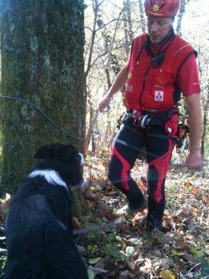 Scompare nei boschi, lo ritrova il cane Tivàn