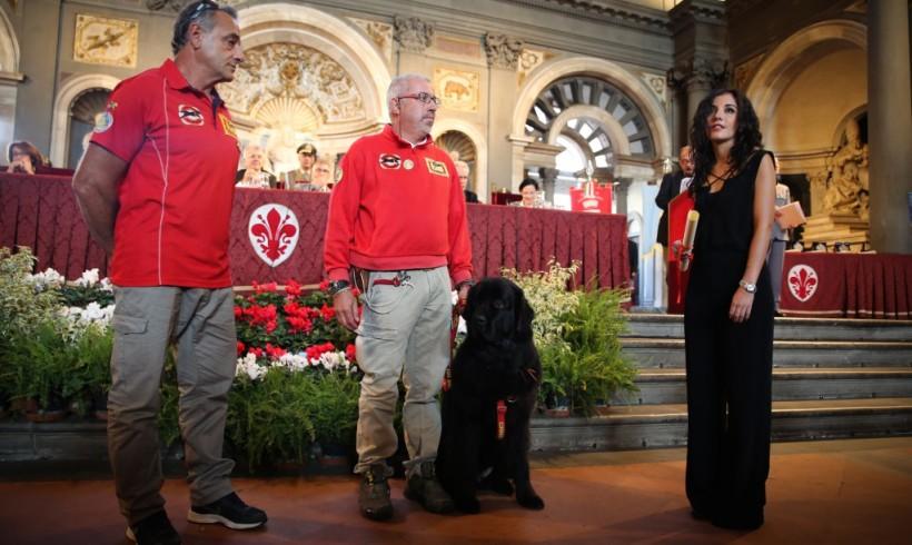 Altruisti, solidali, professionali: un premio per i cani da salvataggio