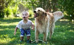 Bimbi meno ansiosi se crescono con un cane: parola di scienziati