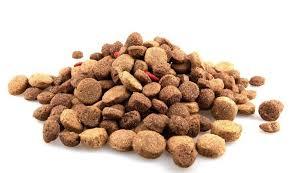 Spaccia le crocchette del cane al posto dell'eroina: in manette