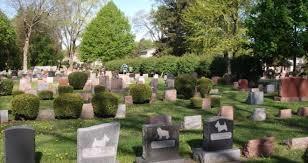 Alle porte di Firenze nuovo cimitero per i quattro zampe