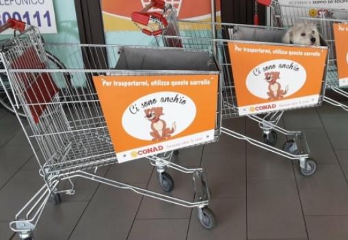 Mettete dei cani nei vostri carrelli! Appello ai supermercati per aprire ai pet