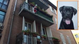 Kassius (nel riquadro) è caduto dal balcone col Babbo Natale