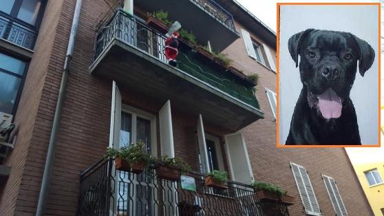 Terrorizzato dai botti si è buttato dal balcone: al meglio, rimarrà paralizzato