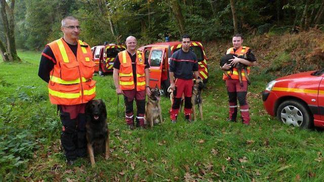 Colto da malore in un parco di Rennes, lo salva il cane dei pompieri