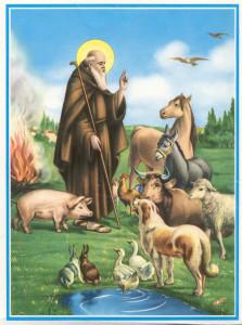 Sant'Antonio Abate nell'iconografia tradizionale come patrono degli animali domestici