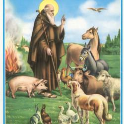 Sant'Antonio Abate è il protettore degli animali domestici: ecco perché