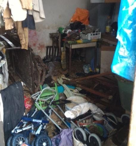 Teneva 32 cani in casa senza luce né gas: denunciato per maltrattamenti