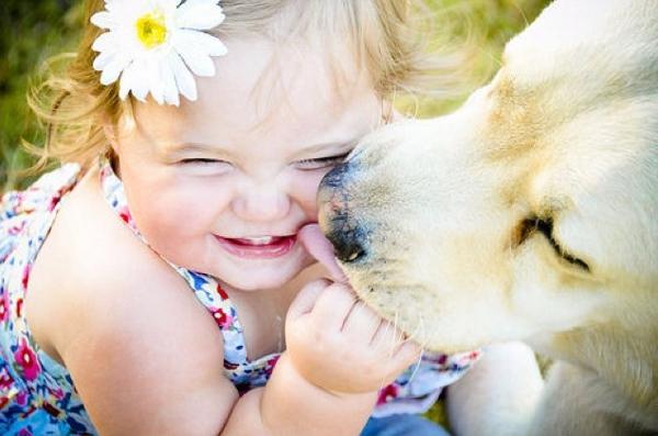 I cani nello stato di famiglia: proposta di legge FareAmbiente