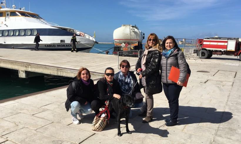 Leo da Favignana a Milano in nave: stamani il risveglio nella sua nuova casa