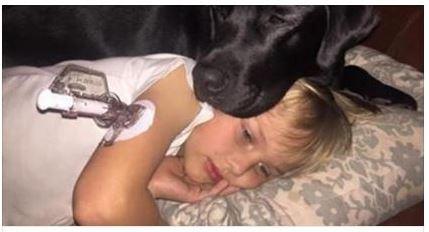 Il cane Jedi salva il padroncino fiutandone il malore