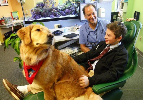 Specialisti in allegria, così alle Molinette i cani aiutano i bambini dal dentista