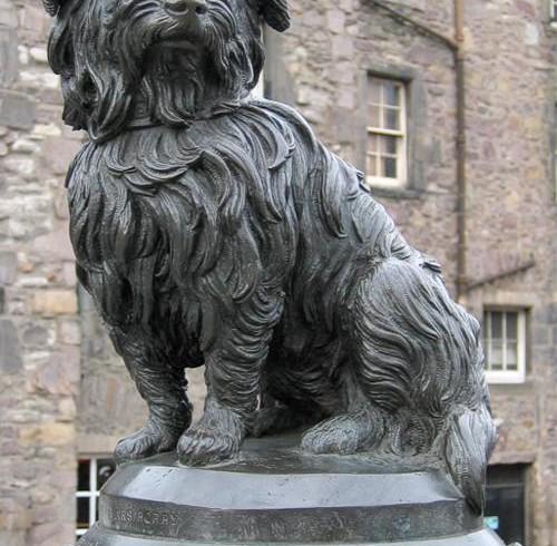 Bobby il cucciolo di Edimburgo: statua, romanzo e film per raccontare fedeltà e amore
