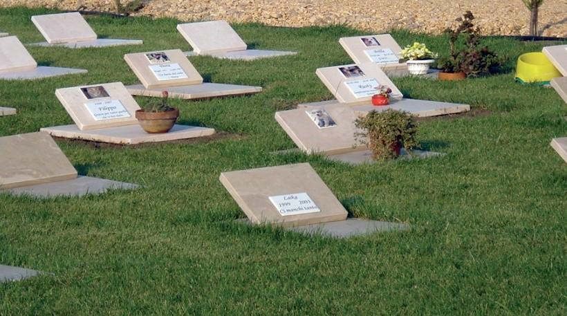 Palermo, cimitero per Fido quasi alla linea di partenza