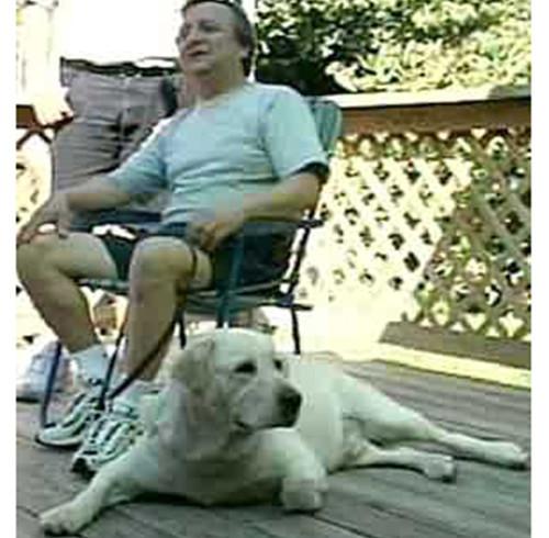 Chi trova un amico trova un Dorado: il cane eroe nell'inferno dell'11 settembre