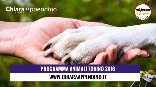 """#elezioni2016 #city4dogs – Torino, Chiara Appendino per una città """"che tuteli gli esseri viventi"""""""