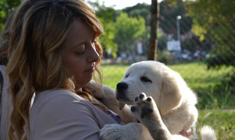 #elezioni2016 #city4dogs – Roma, Meloni dice no all'accattonaggio con i cani e sì agli incentivi alle adozioni