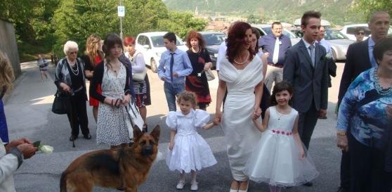 La sposa è non vedente: damigella a quattro zampe (il cane guida) porta le fedi all'altare