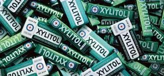 Xylitolo: delizia per gli umani ma per i cani è veleno