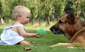 Bimbi e cani: settimane di giocosport nei centri cinofili Fisc – I parte