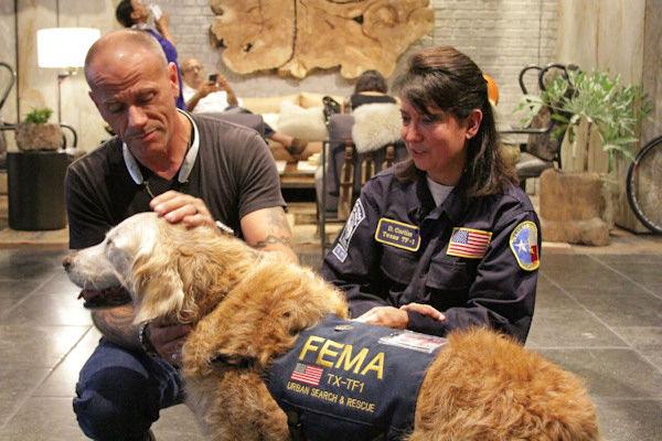 E' morta Bretagne, ultimo cane eroe nell'inferno dell'11 settembre a NY