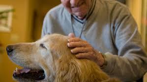 A Campobasso l'Alzheimer si batte a colpi di coda