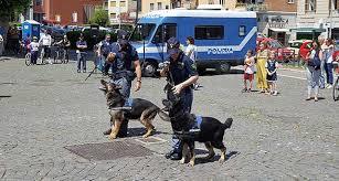Unità cinofile della polizia, il punto oggi in una tavola rotonda