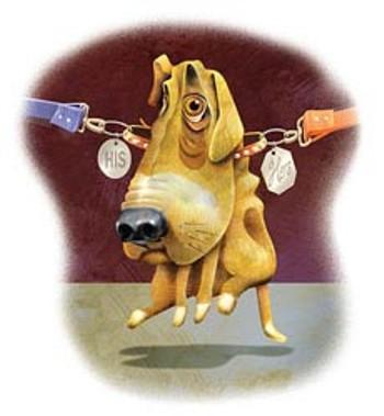 Affido condiviso per Spot, il cane conteso da una coppia di fatto in rottura: così ha deciso il tribunale di Roma