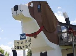 Sweet Willy: l'architettura a forma di beagle