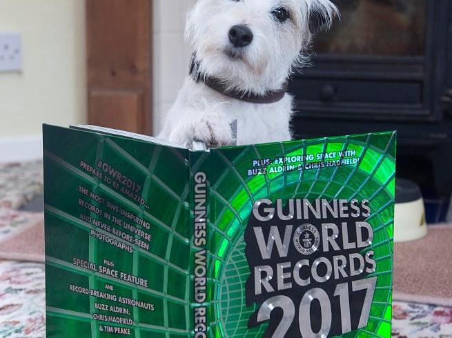 Record da cani: Smurf nel Guinness dei Primati 2017. Che dire? Prepara anche il tè…