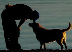 Dal 400, la prima edizione moderna dell'Elogio del Cane è targata Olschki