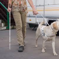Non vedente e cane guida aggrediti da un cane senza guinzaglio. Appello al rispetto delle regole dall'Unione Ciechi
