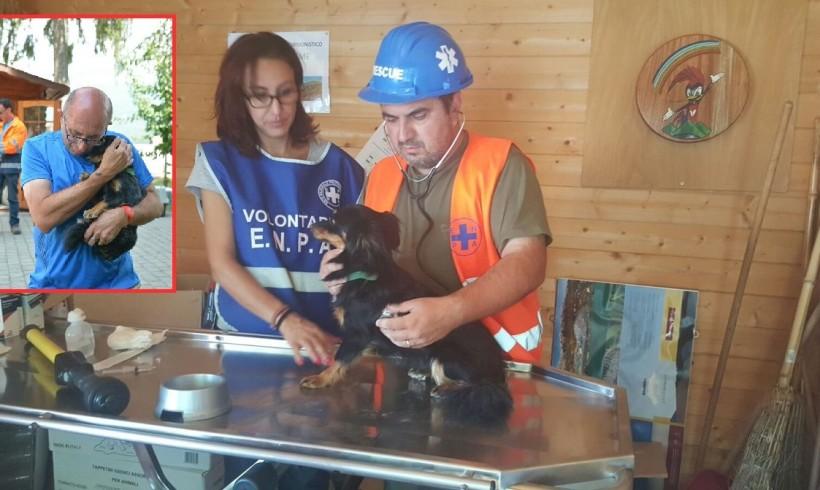 """+++ Terremoto & gelo – Appello Enpa: """"Dramma senza precedenti, aprire strutture anche a cani e altri animali da compagnia"""""""