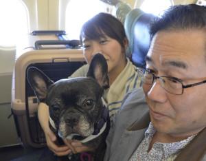 Una coppia a bordo col suo cagnolino
