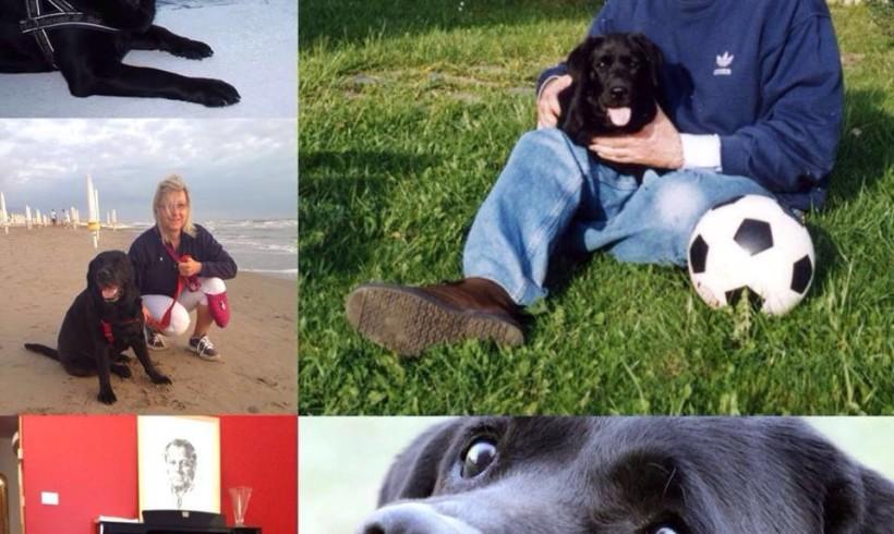 Se n'è andata Liù, la cagnolina di Edmondo Berselli protagonista del suo ultimo libro