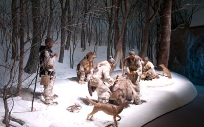 Cani compagni di caccia fin dalla preistoria: dal Giappone antico lo studio sui Jōmon