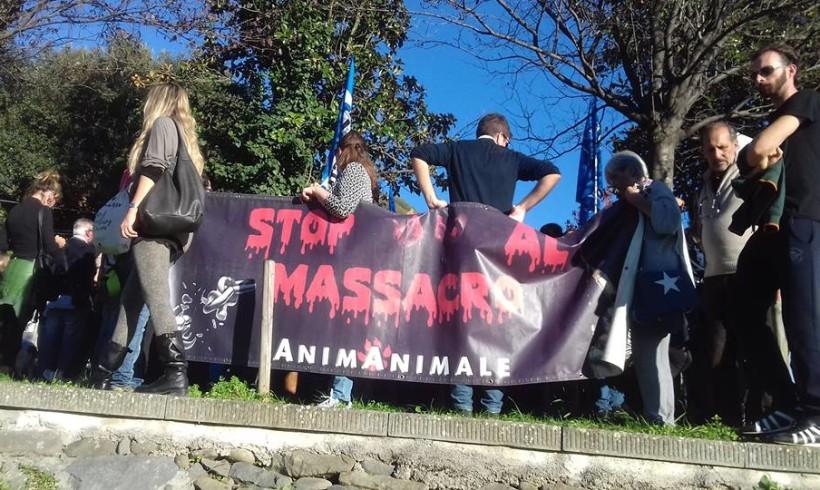 +++ QlZ Adesso – A Pescia da tutta la Toscana per dire NO alla violenza sugli animali +++