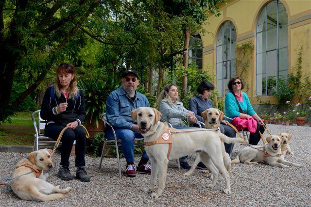 Successo per l'open day alla Scuola Nazionale cani guida per ciechi della Toscana