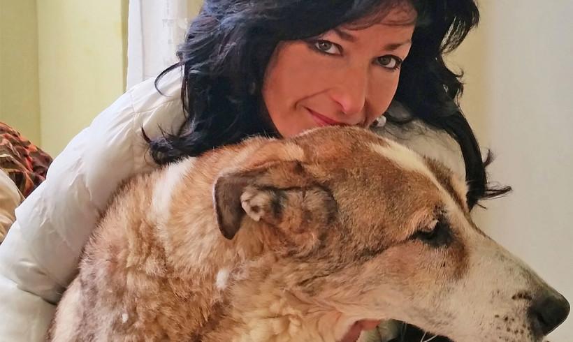 L'INTERVENTO – Cani straziati, torturati, uccisi, massacrati: da LNDC riflessione complessiva sulle cronache dell'orrore