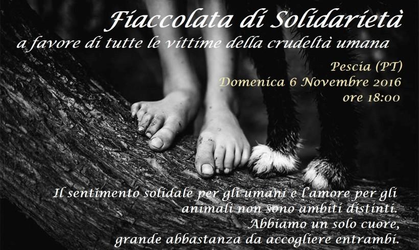 No alla violenza: fiaccolata solidale per le vittime a Pescia