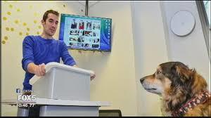 Dalla platea nuda alla platea pelosa: parlare ai cani per parlare meglio si impara alla Kogod School of Business