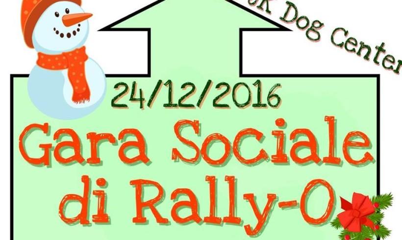 Vigilia di Natale con la coda: c'è la gara sociale Rally-O del JK Dog Center